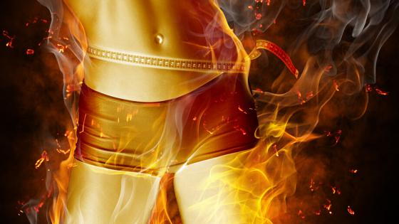 Como funciona a queima de gordura no corpo humano?