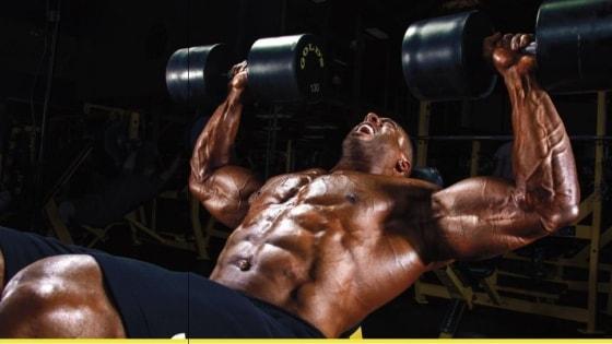Como Montar um Treino de Musculação?