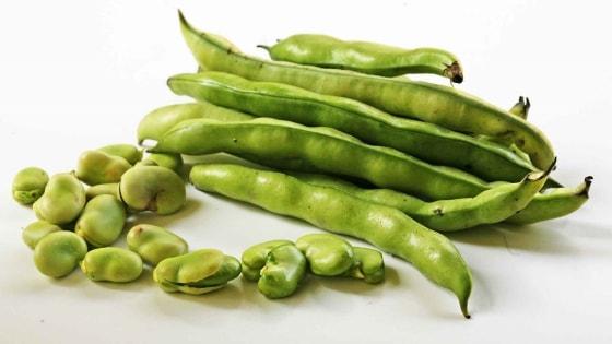 Alimentos que contém proteínas - Feijão e fava