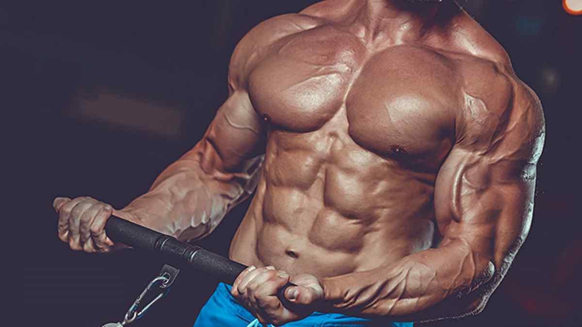 Como Ganhar Massa Muscular Sem Engordar?