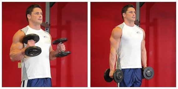 Treino de braço - Biceps