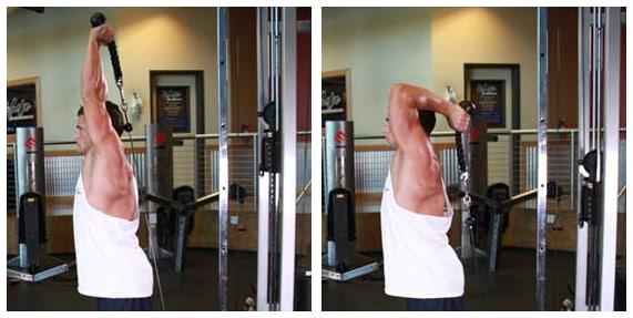 Treino de braço - Tríceps