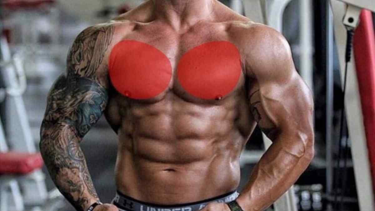 dicas de treino de peito