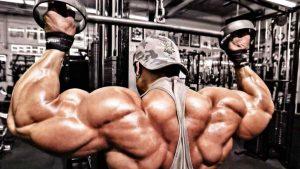 Como os Músculos Crescem 2