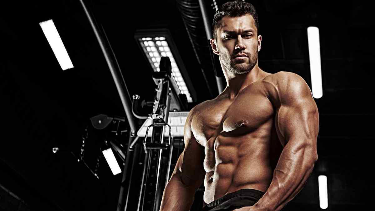 Qual a Função da Testosterona?