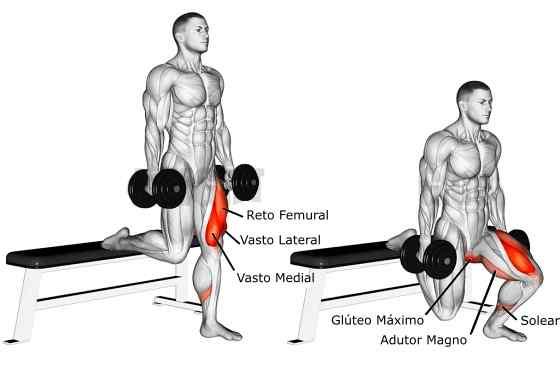 Afundo Búlgaro com Halteres músculos trabalhados
