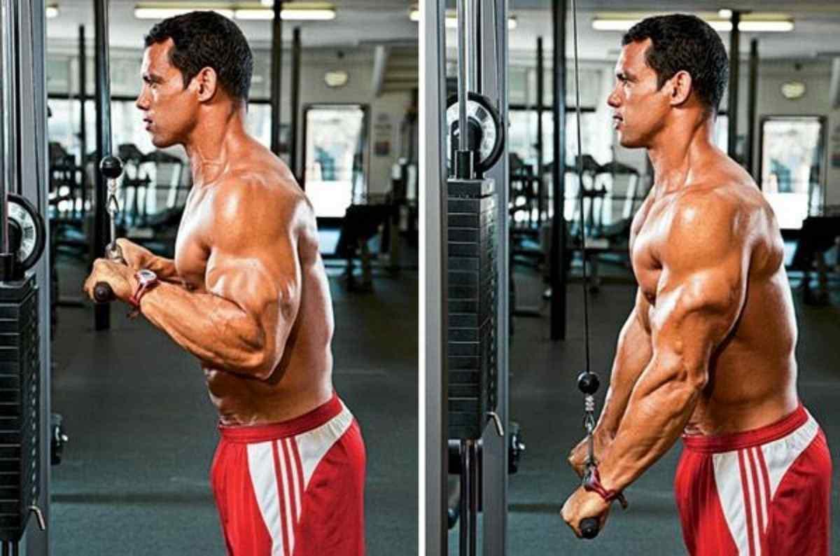 Como fazer triceps pulley