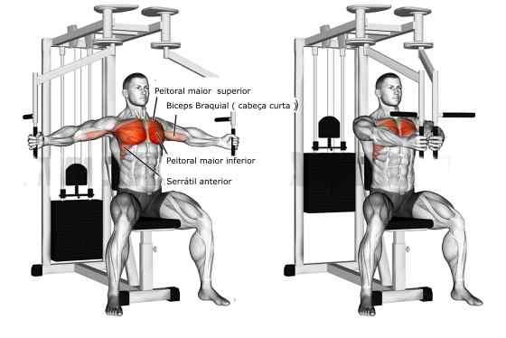 10 melhores exercícios para peito