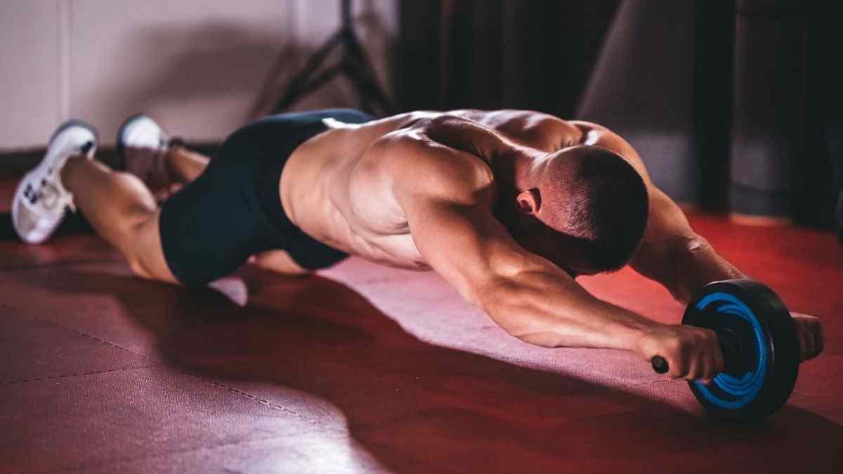 Quais músculos trabalha a roda abdominal?